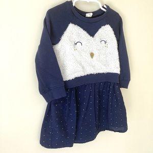 Baby Gap Owl long sleeve blue dress size 3